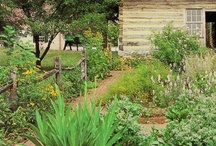 COTTAGE GARDENS / by Janet