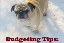 Costs of Having a Dog / The costs of pet care plus anything else money related that has to do with your dogs
