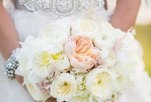 Dream Wedding Ideas / by katherine williams