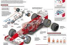 Formula 1 Infographics / by Visual Loop