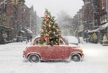Christmas / by Faith Teff
