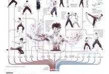 Bruce Lee Infographics