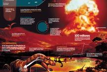 Dinosaurs Infographics / by Visualoop