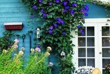 gardens / by Jan Humphrey