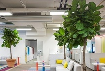 Creative Office / Inspiration to that oh so happy creative office!