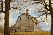 Barns / A collection of barns!  Some are old and some are new!  They all have a special character of their own.  Some are faded and some are bright!  Many have cherished memories  and histories that will never be forgotten. / by Linda Clark