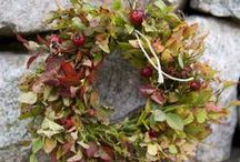 Wreaths~ / by Clementine
