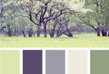 Colour Conscious