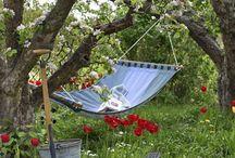 Enchanted Garden  / Walk with me in the garden.....