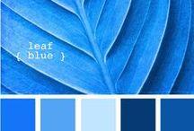 Colour My World | Blue