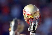 Seminole Nation / I bleed Garnet and Gold!!!