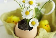 Autre idée de l'oeuf ✰  egg / Un monde différent qui prend naissance dans l'œuf