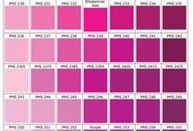 Rose ✰ Pink
