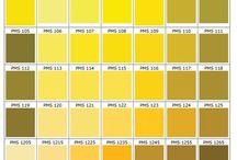Yellow Gold ✰ Jaune or