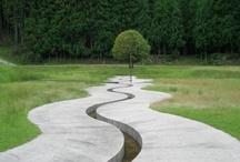 Garden .. / by Catherine Serafini