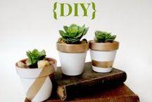Gift Ideas / by Diana Stephenson