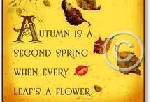 Autumn-Halloween-Thanksgiving / by Diana Stephenson