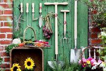 Gardening / by Maegan Struppeck