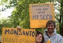 March against Monsanto 2013