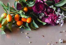 botanicals / by Tara Craft-Campbell