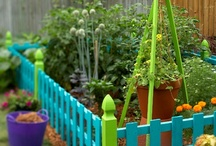 Gardening / by Miriam Lee