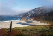 <<>>california ∆ love<<>> / by Sharon Vine