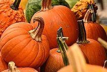 Seasonal {Fall}