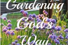Gardening / Tips and ideas for growing fruits, vegetables, and flowers. / by Taunnya Dunn Coe