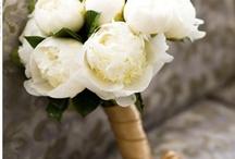 Gold-White Wedding