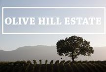 Olive Hill Estate / Named for B.R. Cohn Winery's historic grove of Picholine olive trees, Olive Hill Estate produces exceptional Cabernet Sauvignon and premium California Olive Oil.