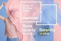 Color Trend: Rose Quartz & Serenity / A collection of fabrics, trimmings and wallcoverings in Pantone's 2016 Color of the Year from our family of brands.