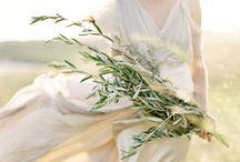 Dream Wedding / by Ashliegh Collett