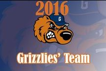 Grizzlies Team