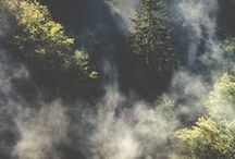 Listen to the sound of Nature / The Natural Amplifier
