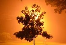 ༺♥༻Sunsets༺♥༻