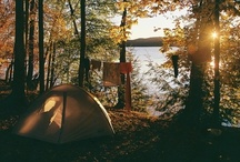 camping / by Liz P