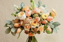 All Things Wedding / Wedding ideas for the future. / by Taylor 'Thomas' Paschal