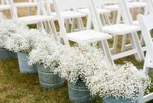 Wedding Stuff / by Brittany Marie