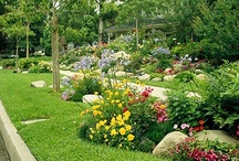 "Flowers and Gardens / Anything ""nature"" that I want to incoporate into the house or yard. Gardening ideas, flower arrangement ideas, patio ideas...etc... / by Debbi"