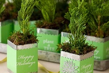 Green Christmas Ideas / by Lavish & Lime