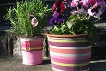 Great Garden Ideas / by Lavish & Lime