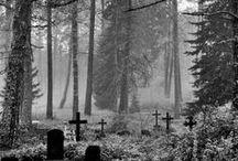 Cemetery ❖