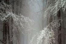 Winter ❖