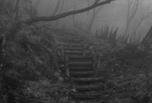 natural | stairs ❖