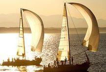 coastal - sailing, lighthouses, ocean / by Lauren Adair Cooper