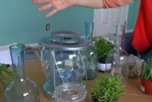 DIY/Hobbies/Useful Info / Step by step instructions on how to dos. / by Jennifer Mc Clinton