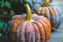 Fall Decorating / Fall Entertaining | Autumn Entertaining | Pumpkin Picking | Pumpkin Spice