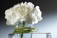 Inspiration:  Contemporary/Exotic Floral Arrangements / Contemporary floral designs / by Jacqueline Roth♡