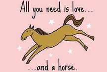 Animals - Horses / I've loved horses since I was a little kid. Unfortunately, my family had neither the money nor space required for a horse. So I've indulged my love riding at camp as a kid and with this board now. / by Jennifer Donatelli