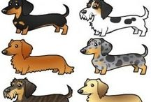 Dachshunds / by Sharon Stead Vassily